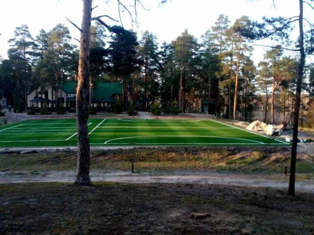 Ход работ строительства спортивной площадки на примере: Готовое покрытие площадки
